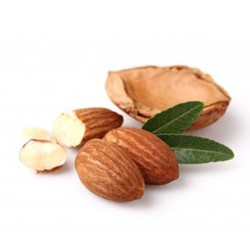 Sweet Almond Oil  : Moisturizing, Protecting and Soothing