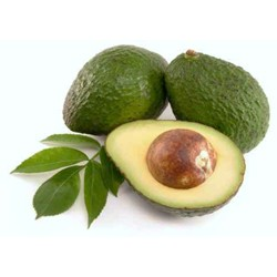 Avocado Oil  : Moisturizing, Soothing, Healing and Anti-inflammatory