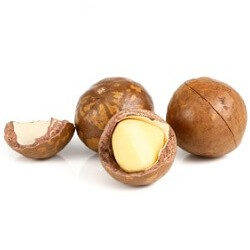 Macadamia Oil  : Antioxidant, Rejuvenating, Nourishing and Healing