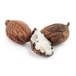 Shea Butter  : Nourishing, Moisturizing and Repairing